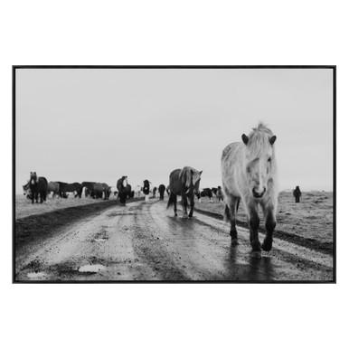 Road Ponies