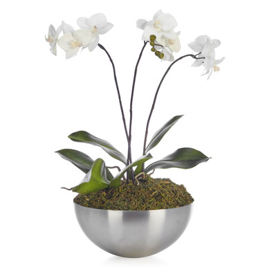 Faux Potted Phalaenopsis