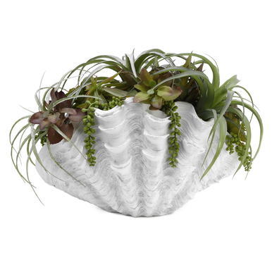 Faux Succulents In Large Shell