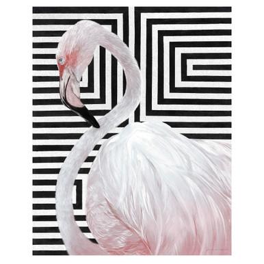 Blush Flamingo 2