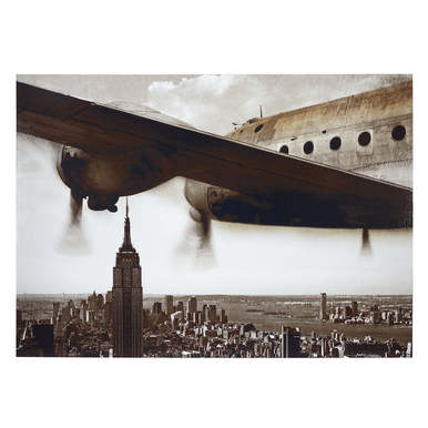 Wings Over Manhattan