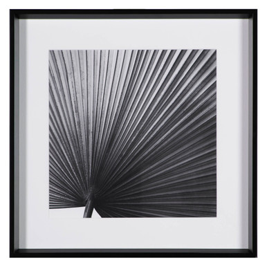 Palm Noir 2