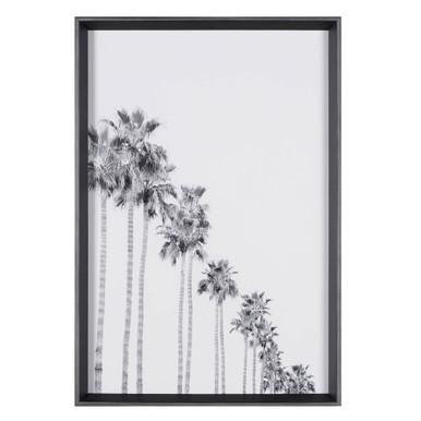 Sunset Palms 2
