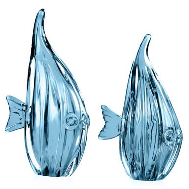 Glass Fish