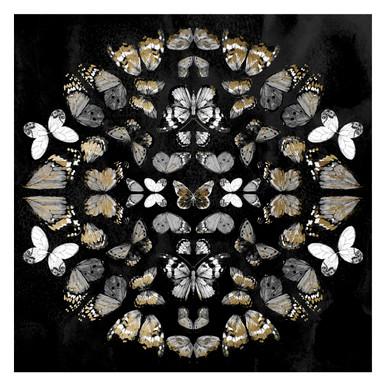 Butterfly Knight