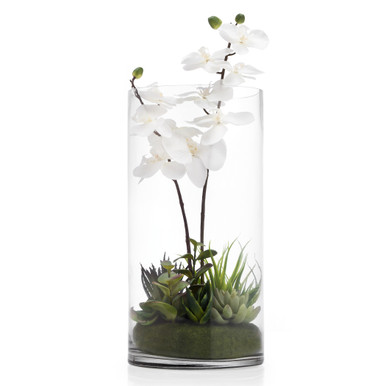 Faux Potted Orchid With Succulents