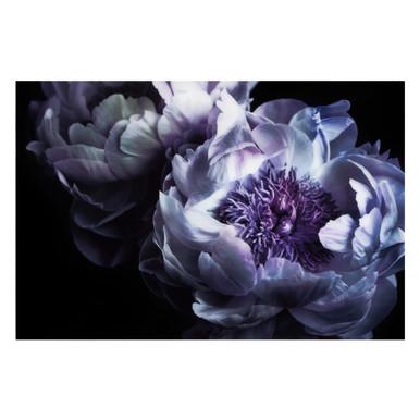 Floral Addiction 4