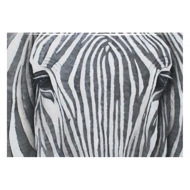 Silver Zebra - Glass Coat
