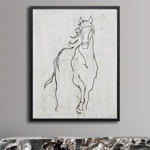 Contour Horse