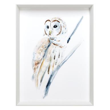 Arctic Owl 1