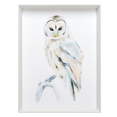 Arctic Owl 2