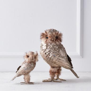 Glam Owl - Set of 2