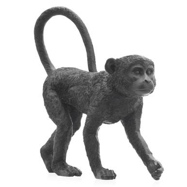 Mono Monkey