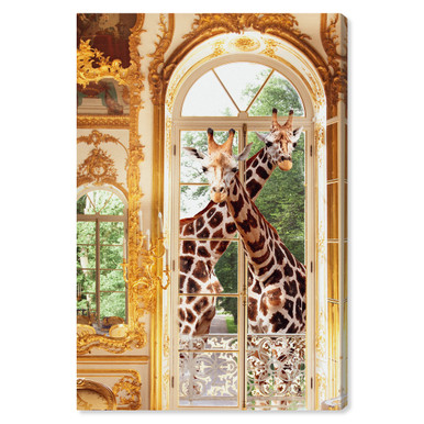 Giraffes Breakfast