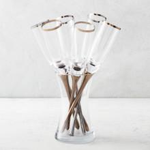 Salud Toasting Flutes - Set of 6