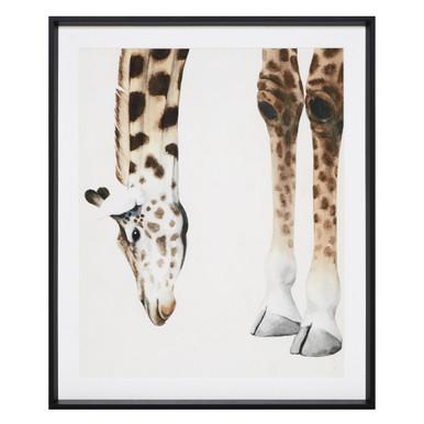 At Your Feet - Giraffe