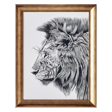Lion Portrait