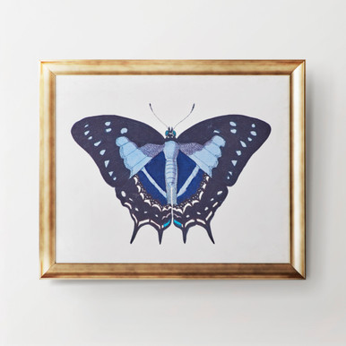 Beautiful Butterfly 3