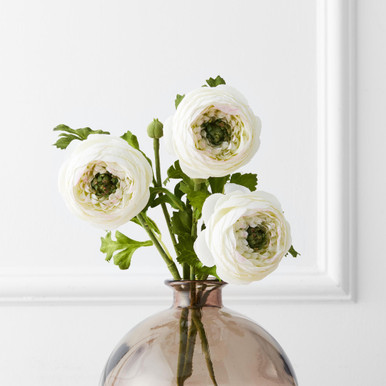 Ranunculus Stem - Set of 3