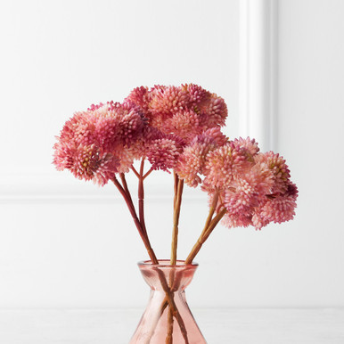 Sedum Pick - Set of 3