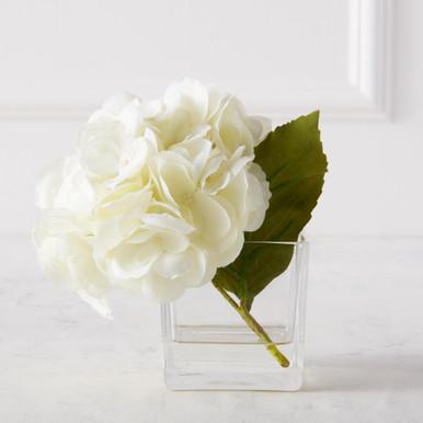 Hydrangea In Glass Vase