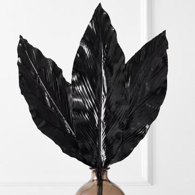 Canna Leaf - Set of 3