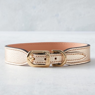 Italian Leather Collar  - Gold