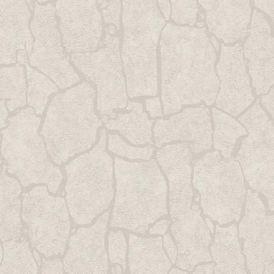 Kordofan Bone Giraffe Wallpaper