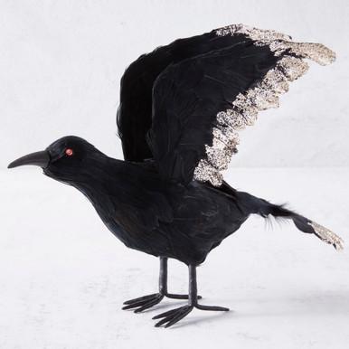 Open Wing Raven