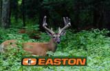 Easton Archery Arrows