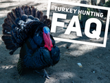 Turkey Hunting FAQ