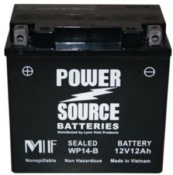 WP14-BS AGM Motorcycle Battery - YTX14-BS