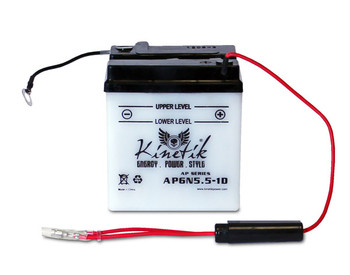 Exide 6N5.5-1D Battery Replacement