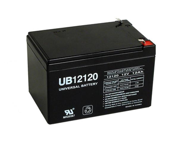 12 Volt 12 Ah Alarm Battery - UB12120