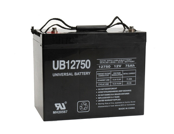 Dynasty UPS12-270 Battery Replacement