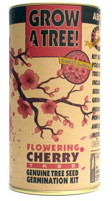 Flowering Cherry Blossom | Parks Collection | Seed Grow Kit