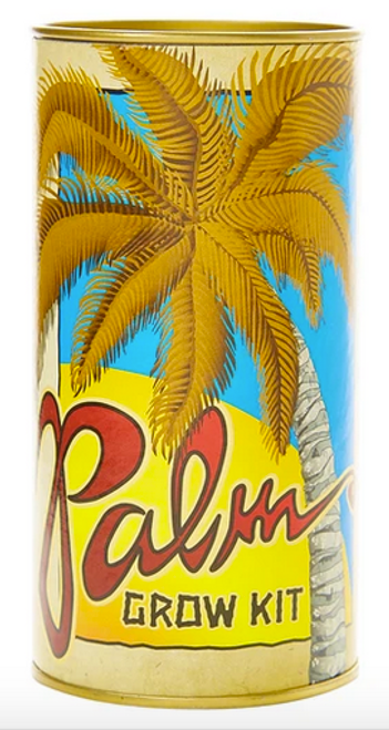 Palm Tree | Seed Grow KitPalm Tree | Seed Grow Kit