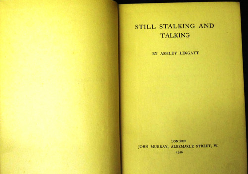 Still Stalking and Talking by Ashley Leggatt copyright page