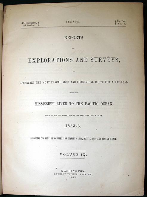Birds: Pacific Railroad Reports Volume 1 1858