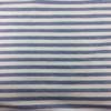 Yarn Dyed Stripe Jersey in Blue