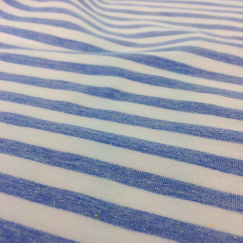 Yarn Dyed Stripe Jersey in Blue