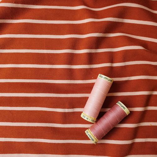 Yarn Dye Stripe Sweatshirt in Ginger/Pink