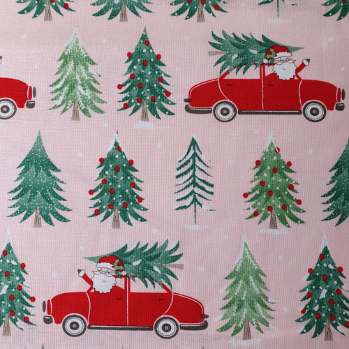 Christmas Post Santa in Blush