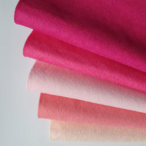 Pink Fizz Felt Bundle