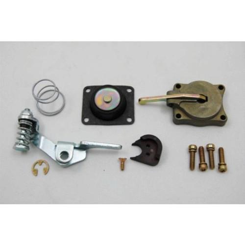 AED5565, 50CC ACCELERATOR PUMP KIT