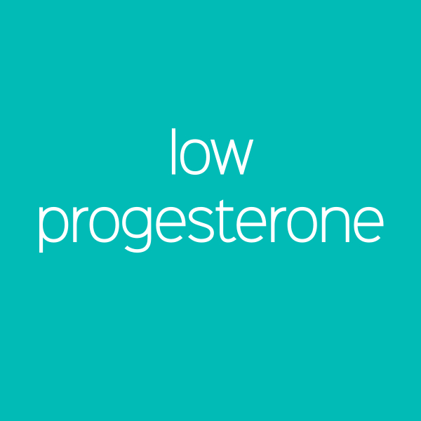 Low Progesterone / Progesterone Boost