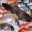 Ozone in Seafood Processing