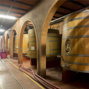 Ozone in the Wine Industry