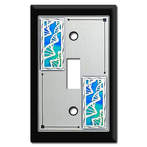 Decorative DNA Switch Plate