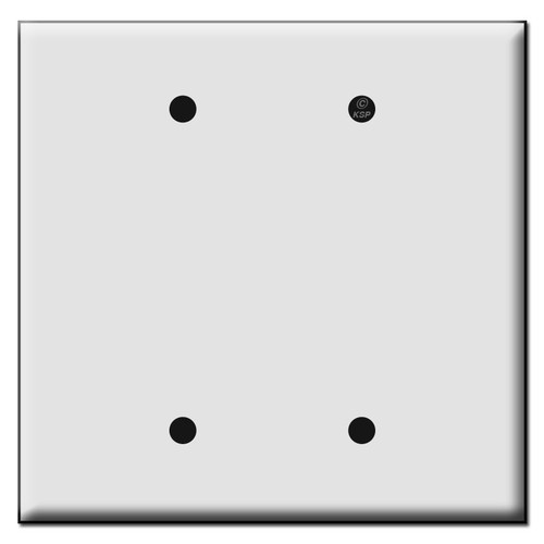 Quality Double Blank Plastic Mid Size Wall Switch Plates